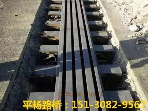 平畅路桥公司模数式伸缩缝的组成结构和性能特点2