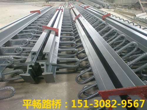 公路桥梁伸缩缝装置 单组式模数式桥梁伸缩缝行业标杆2