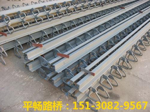 公路桥梁伸缩缝装置 单组式模数式桥梁伸缩缝行业标杆3