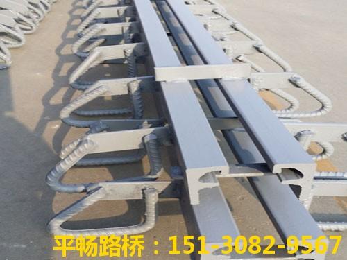 公路桥梁伸缩缝装置 单组式模数式桥梁伸缩缝行业标杆4