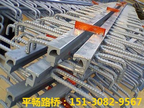 公路桥梁伸缩缝装置 单组式模数式桥梁伸缩缝行业标杆5