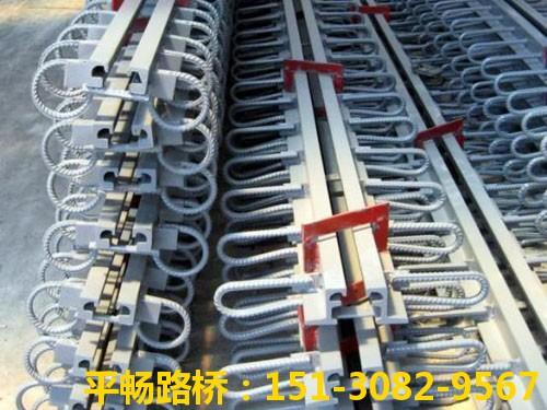 公路桥梁伸缩缝装置 单组式模数式桥梁伸缩缝行业标杆6