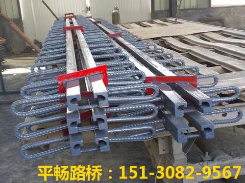 公路桥梁伸缩缝装置 单组式模数式桥梁伸缩缝行业标杆8