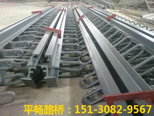 公路桥梁伸缩缝装置 单组式模数式桥梁伸缩缝行业标杆7