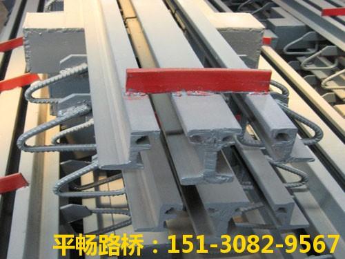 公路桥梁伸缩缝装置 单组式模数式桥梁伸缩缝行业标杆9