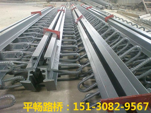 公路桥梁伸缩缝装置 单组式模数式桥梁伸缩缝行业标杆14