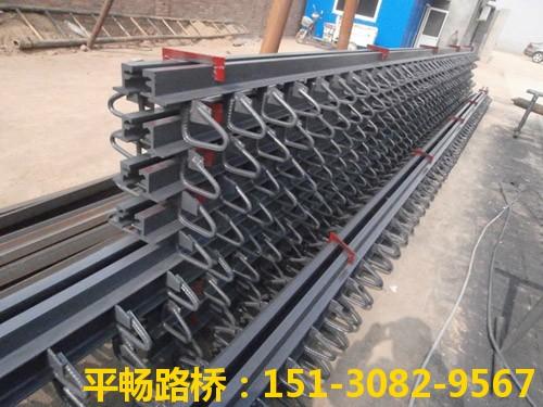 公路桥梁伸缩缝装置 单组式模数式桥梁伸缩缝行业标杆13