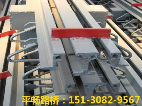公路桥梁伸缩缝装置 单组式模数式桥梁伸缩缝行业标杆15