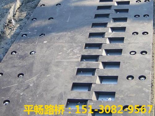 公路桥梁伸缩缝装置 单组式模数式桥梁伸缩缝行业标杆16